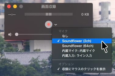 soundflower04
